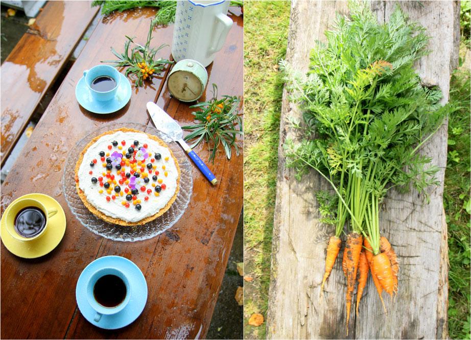 Raw_Carrot_Cake3