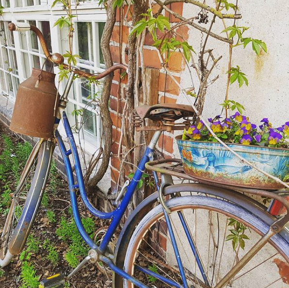 Jolie pyörä
