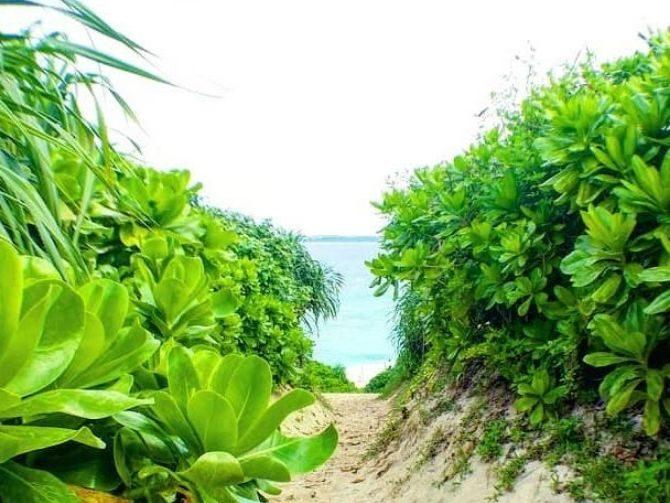 J-Beauty Beach View